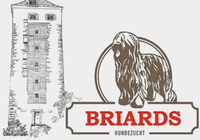 Logo Briards vom Schurkenturm