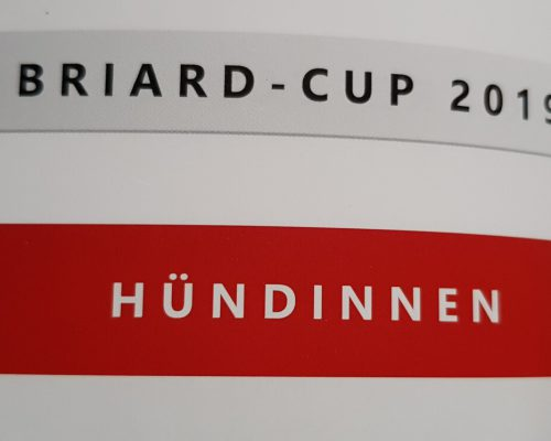 Briard - CUP 2019